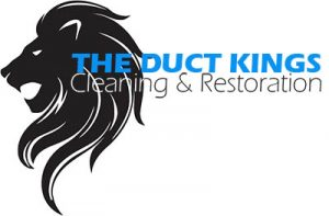 the duct kings air duct cleaning in Dallas TX